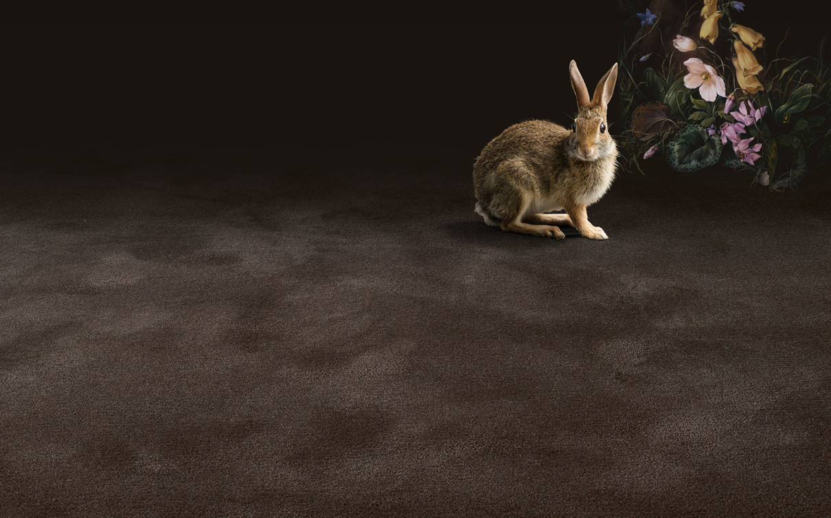 manufaktur_pure-wool_rabbit_brown_oc